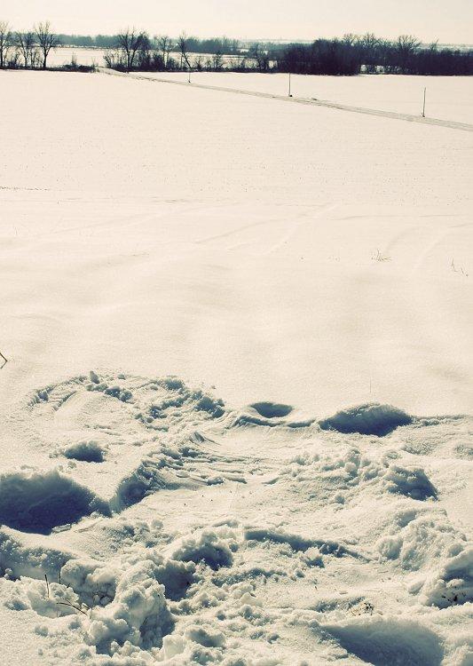 01-28-snow4