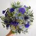 Nigella, cornflower, thistle, hydrandea, delphinium