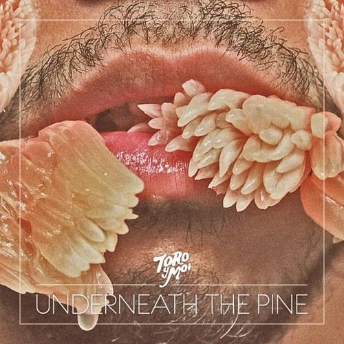 TORO-Y-MOI-UNDERNEATH-THE-PINE
