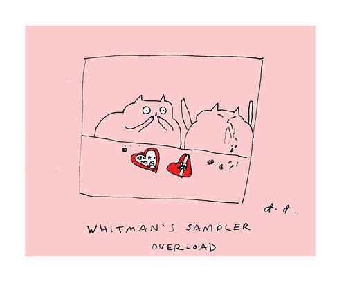 Whitman's Sampler Overload