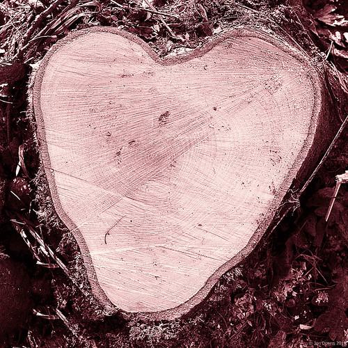 love was ...