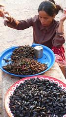 P1140435 (morbs06) Tags: cambodia snacks siemreap ankorwat grashopper waterbeetles