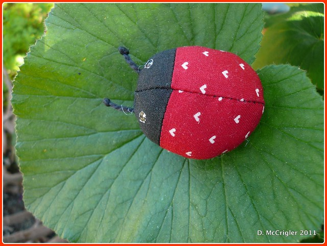 Ladybug brooch-close up