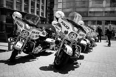 Uniformity (Dan Haug) Tags: ottawapolice ops ottawa harleydavidson motorcycle motorcade escort parked parliamenthill blackandwhite monochrome noiretblanc fujifilm x100f
