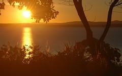 Stunning Sunrise (shelley.sparrow) Tags: stunningsunburst sunrise shelleysparrow brisbane queensland australia morning morningglow nikon trees ocean stunningsunrise