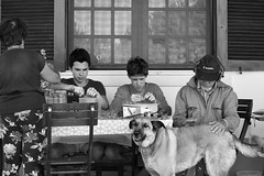 Family Moments (SandraFotosPortfolio) Tags: family moments homegrown oregano blackwhitephotos blackwhite blackwhitephotography blackandwhite portraits portraitfaces dogs grandparents life happy love mom dad grandfather grandmother