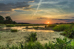 The cold of july (piotrekfil) Tags: nature landscape sunset sky clouds river water plants sun summer pentax poland piotrfil