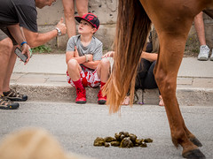 Every picture tells a story... (paulstewart991) Tags: canon70d canadian humour story storytelling horse tales