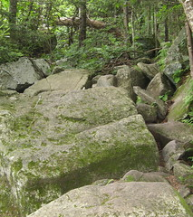 Boulders in trail