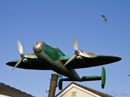 Airplane yard art