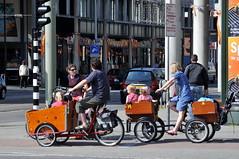 Paletplein Den Haag