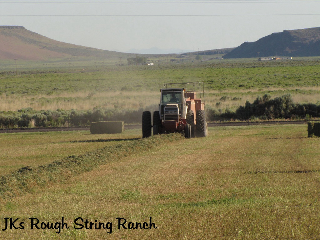 Hay Man Rudy~1st Cutting 2010