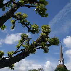 Mariefred (*Kicki*) Tags: sky tree church clouds square cross minolta branches dynax7d 7d konica dynax 2010 konicaminolta mariefred kicki sdermanland konicaminoltadynax7d svenskaamatrfotografer kh67