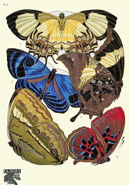 006-Papillons vingt planches en phototypie coloriees..1928- Eugene Alain Seguy
