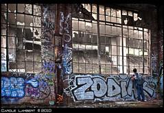 Cammu (CARPATES) Tags: broken window glass ruins grafitti decay montreal urbandecay dirt abandon urbanexploration shattered casse abandonned vitres idn graffitis manufacture ruines fenetres urbex salet manufactury explorationurbaine georeed