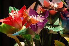 Origami flowers (Photonoumi) Tags: flowers colors fleurs paper origami couleurs papier pliage