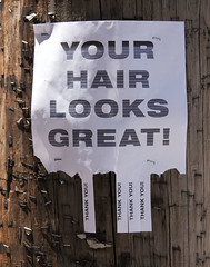 Free Compliment. Take One. (Chicago_Tim) Tags: street ny newyork sign thanks hair funny thankyou albany firstfriday lark compliments yourhairlooksgreat