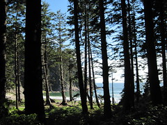 IMG_0596 (reistarr) Tags: beach oregon coast oswaldwest capefalcon shortsandsbeach