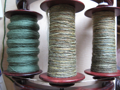 Rainforest 3-ply