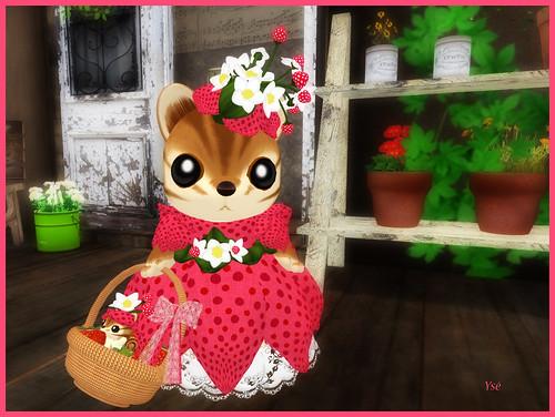 Petite robe - Page 2 4760079041_2a20415dcf