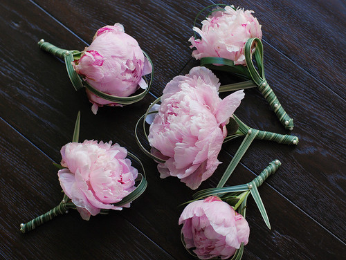 peony boutonnieres