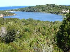 Anse et presqu'île de Rondinara (depuis la piste de montée au premier carrefour de pistes)