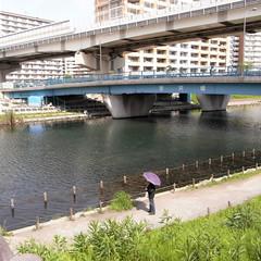 Sakai-bashi Bridge 03