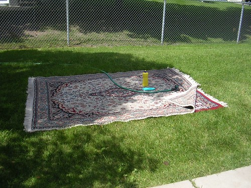 carpets on the lawn to be scrubbed