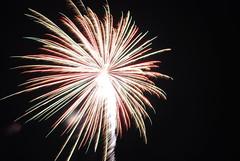 fireworks 2010 171 (gary camp) Tags: fireworks2010