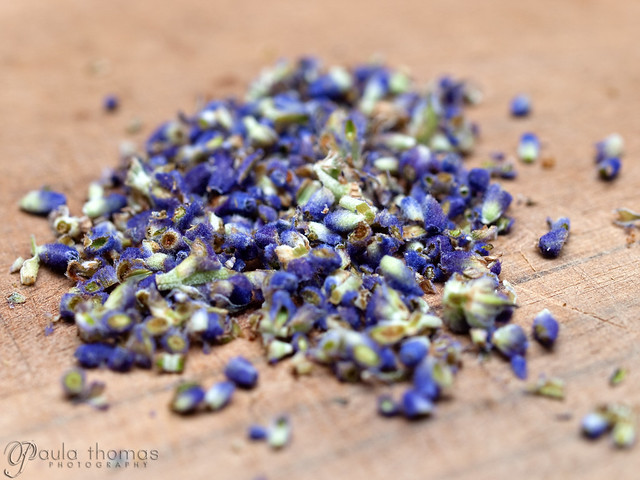 Chopped English Lavender Buds