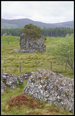 Boulders (spodzone) Tags: nature rock stone landscape scotland highlands rocks boulders geology farr strathnairn lithology dunlichity psammite neoproterozoic semipelite