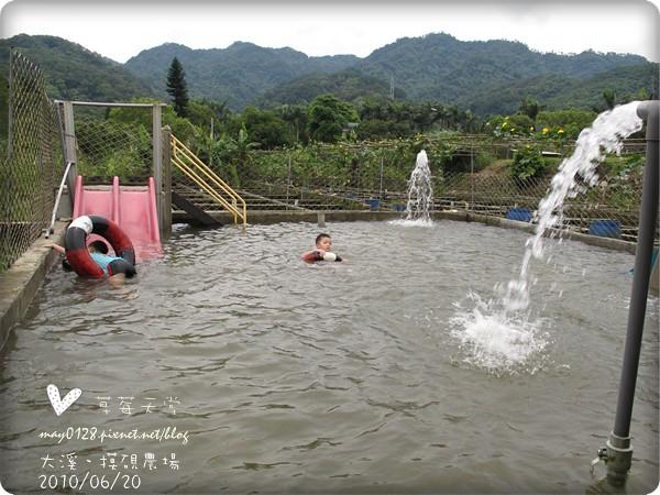 大溪摸硯農場117-2010.06.20