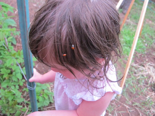Ladybugs in her hair!