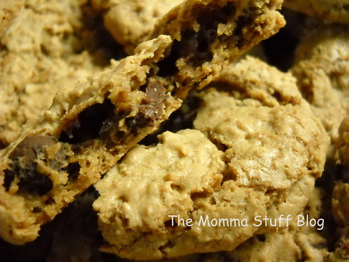 gluten-free oatmeal chip cookie recipe