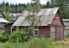 rosyln washington (mighty grand poova) Tags: history abandoned washington shed roots mining ghosttown shack antiques northernexposure rosyln woodenstructures inlandnorthwest pacnorthwest forgottne eastcasades