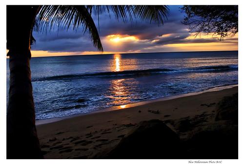 paisajes naturales puerto rico. de+paisajes+de+puerto+rico