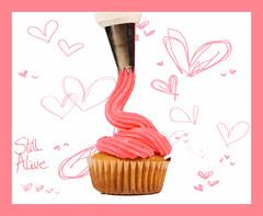 Pumpkin (Still Alive ..) Tags: pink cakes canon pumpkin cupcakes still mini 7d alive kuwait q8 moiq8