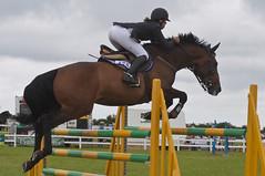 _DSC7910 (mary~lou) Tags: show horse animal fletcher person jump nikon mary d90 gamewinner 15challengeswinner mary~lou pregamewinner