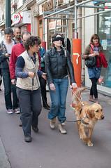 Ecole-Chiens-Guides-pour-Aveugles-Paris-1