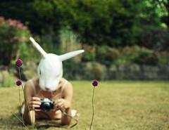 295/365 Wildlife.Photographer. (sosij) Tags: camera flowers selfportrait rabbit bunny canon vintage dof mask olympus humour 5d om1 oldcamera rabbitmask