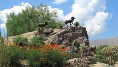 Curt Mattson (rocor) Tags: bighorn palmsprings cahuillahills california bighorngolfclub highway74 palmdesert curtmattson bronze