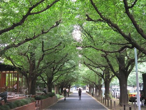 神宮外苑ランチ散歩