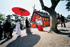 a new world (troutfactory) Tags: wedding friends shadow red building tree film japan japanese amazing interesting traditional voigtlander rangefinder wideangle parasol  kimono analogue miko shinto 15mm bessal  heliar  reala100 sumiyoshitaisha  redparasol sumiyoshishrine