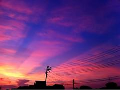 2010/07/20 (Nam2@7676) Tags: 日本 東京 iphone 7676 iphone4 nam2at7676 ナムナム nam27676 中村康就