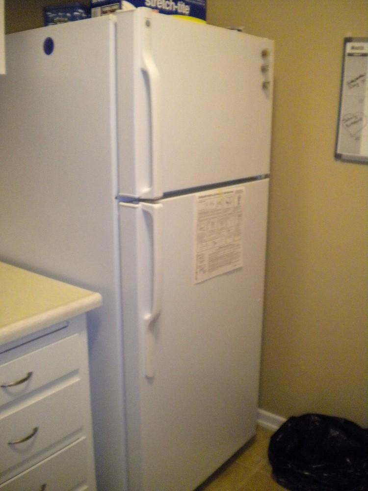 GE 18 cu.ft EnergyStar(R) Refrigerator