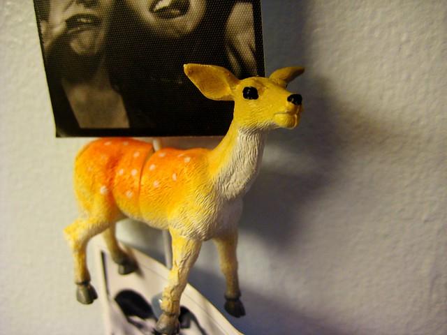 2010-07-21 deery 001