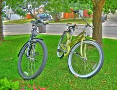 Sun Bicycles (Sun Cruz 3spd Alloy) HDR1