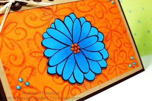 JudysBloom Blue (3)