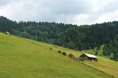 summerscape (kosova cajun) Tags: summer green barn landscape highlands cabin stan haystacks pasture kosova kosovo pastoral kosov rugova peisazh bog rugov bjeshktenemuna accursedmountains bjeshk albanianalps alpetshqiptare