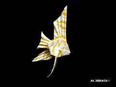 Veiltail Angelfish (Al3bbasi.) Tags: fish origami angelfish kamiyasatoshi veiltailangelfish al3bbasi